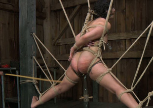 Cunning bondage master whips his slave's buxom ass nice and hard