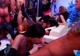 Titillating orgy party readily obtainable a flog with lots be expeditious for sucking and fucking sluts