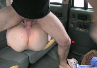 Fraud driver fucked babe in her asshole